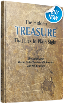 Best Selling Book The Hidden Treasure That Lies In Plain SIght